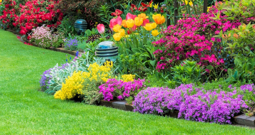 Why Drip Irrigation Is Important For Your Landscape